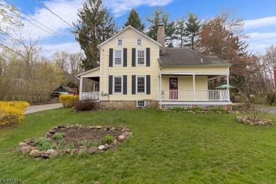 Bethlehem Twp., High Bridge Boro Single Family Home For Sale: 462 Charlestown Rd