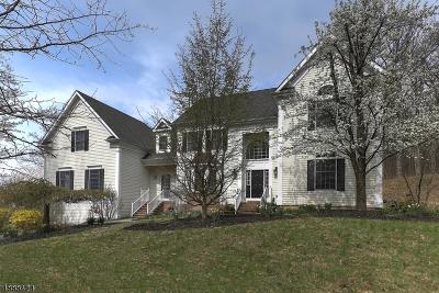 Bernards Twp., Bernardsville Boro Single Family Home For Sale: 380 Whitenack Rd