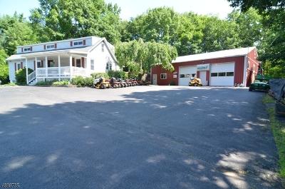 Bethlehem Twp., High Bridge Boro Single Family Home For Sale: 1093 State Route 173