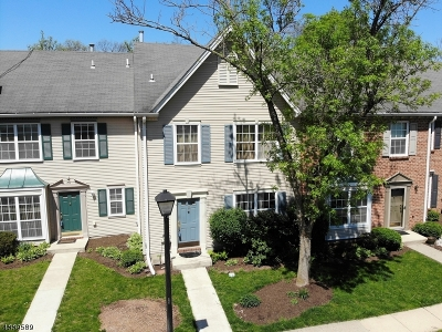 Franklin Twp. Condo/Townhouse For Sale: 5 Chelsea Ct
