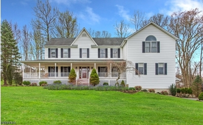 Rockaway Twp. Single Family Home For Sale: 3 Chandler Ter