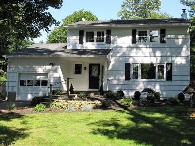Chester Boro Single Family Home For Sale: 21 Orange St