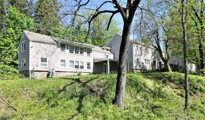 Bernardsville Boro NJ Single Family Home For Sale: $595,000