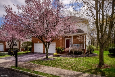 Montgomery Twp. Single Family Home For Sale: 17 Hudnut Ln