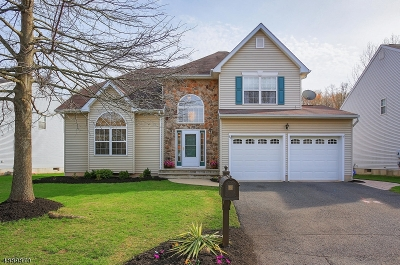 Scotch Plains Twp. Single Family Home For Sale: 45 Clydesdale Rd