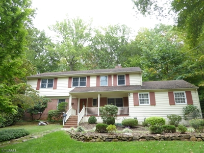 Morris County, Somerset County Rental For Rent: 18 Indian Head Rd