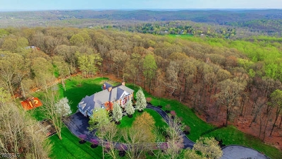 Mendham Boro, Mendham Twp. Single Family Home For Sale: 10 Ascot Ln
