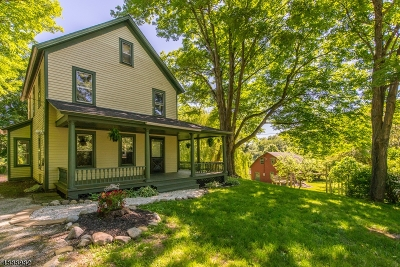 Stillwater Twp. Single Family Home For Sale: 908 Route 521