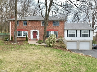 Mount Olive Twp. Single Family Home For Sale: 33 Tinc Rd