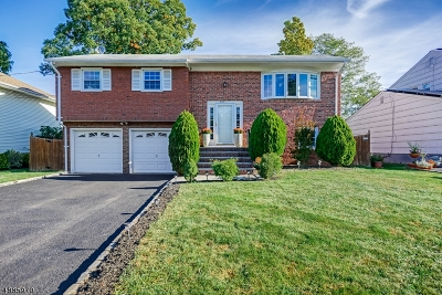 Scotch Plains Twp. Single Family Home For Sale: 849 Ternay Ave