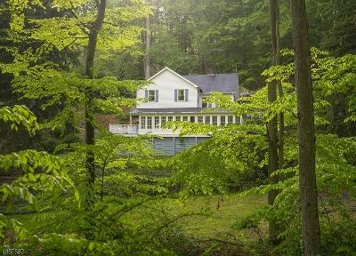 Bernards Twp., Bernardsville Boro Single Family Home For Sale: 250 Hardscrabble Rd
