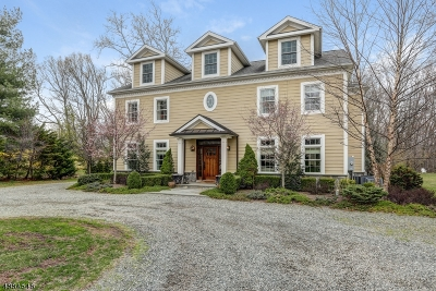 Hanover Single Family Home For Sale: 186 Parsippany Rd