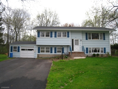 Montville Twp. Single Family Home For Sale: 23 Walnut Dr