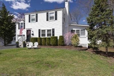 Chatham Boro Single Family Home For Sale: 9 Van Doren Ave