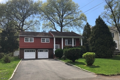Westfield Town Single Family Home For Sale: 1110 Irving Ave