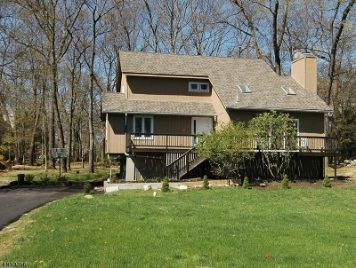 Byram Twp. Single Family Home For Sale: 1 Catherine Ter