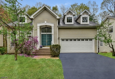 Somerset County Single Family Home For Sale: 18 Hartley Lane