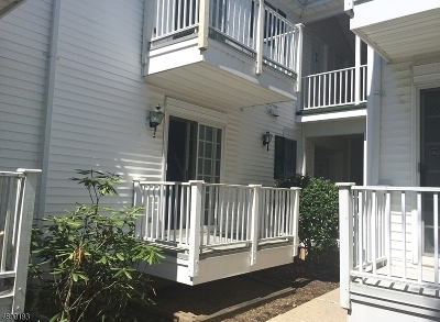 Somerset County Condo/Townhouse For Sale: 93 Alexandria Way #93