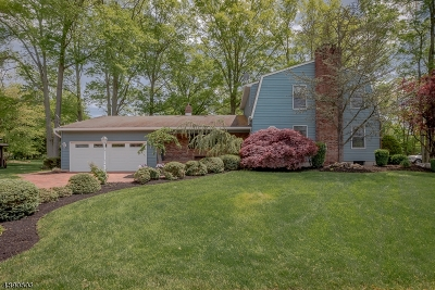 Franklin Twp. Single Family Home For Sale: 68 Bennington Pky