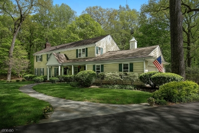 Harding Twp. NJ Single Family Home For Sale: $1,195,000