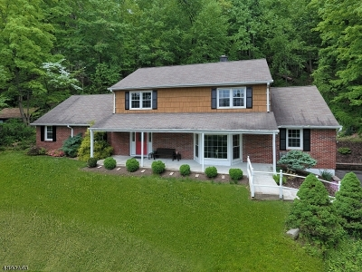 Montville Twp. Single Family Home For Sale: 14 Peace Valley Rd