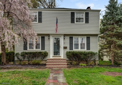 Cranford Twp. Single Family Home For Sale: 26 Herning Ave