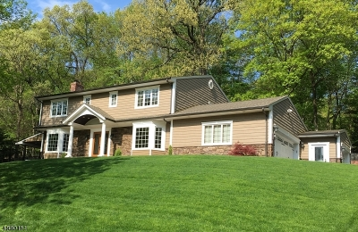 Parsippany-Troy Hills Twp. Single Family Home For Sale: 6 Tracy Ln
