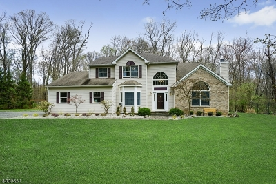 Hunterdon County Single Family Home For Sale: 249 Goat Hill Rd