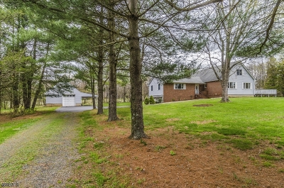 Hunterdon County Single Family Home For Sale: 1 Garden Ln