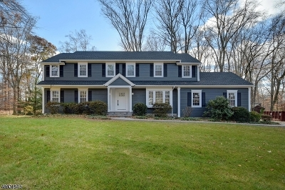 Scotch Plains Twp. Single Family Home For Sale: 17 Black Birch Rd