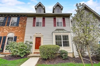Branchburg Twp. Condo/Townhouse For Sale: 607 Red Crest Ln