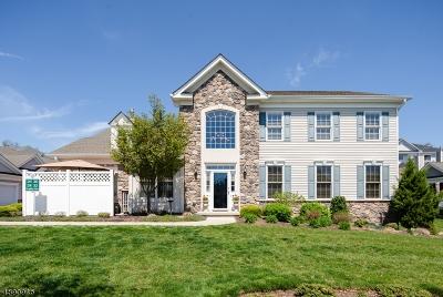 Woodland Park Condo/Townhouse For Sale: 32 Graphite Dr