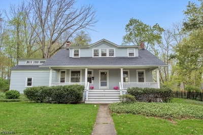 Summit Single Family Home For Sale: 73 Passaic Ave