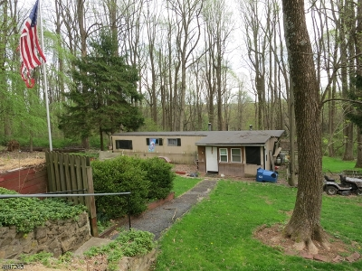 Hunterdon County Single Family Home For Sale: 5 Orchard St East