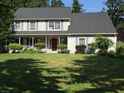 Mount Olive Twp. Single Family Home For Sale: 17 Indian Spring Rd