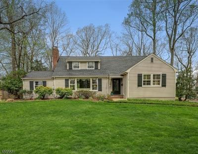 Chatham Boro Single Family Home For Sale: 280 Fairmount Ave