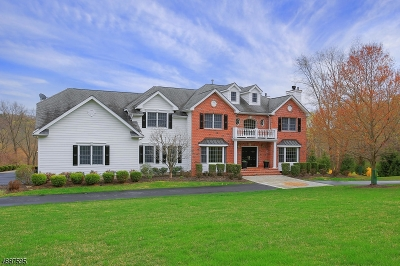 Morristown Town, Morris Twp. Single Family Home For Sale: 10 Whispering Meadow Dr
