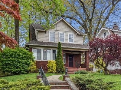 Belleville Twp. Single Family Home For Sale: 265 Union Ave