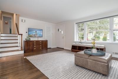 Chatham Boro Single Family Home For Sale: 223 Hillside Ave