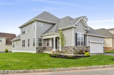 Hillsborough Twp. Single Family Home For Sale: 69 Kline Rd