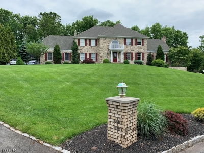 Clinton Twp. Single Family Home Active Under Contract: 4 Grandin Ter