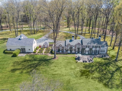 Harding Twp. NJ Single Family Home For Sale: $2,985,000