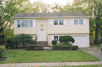 Bridgewater Twp. Single Family Home For Sale: 287 English Ct