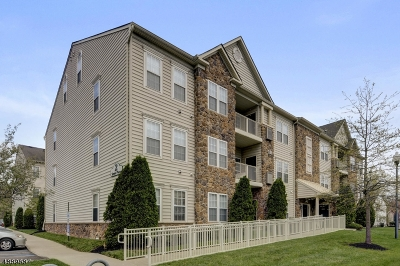 Hillsborough Twp. Condo/Townhouse For Sale: 2 Steele Pl Apt E #E5