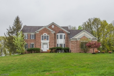 Montville Twp. Single Family Home For Sale: 21 Bonnieview Ln