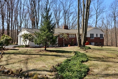 Watchung Boro NJ Single Family Home For Sale: $589,900