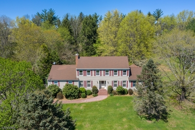 Hunterdon County Single Family Home For Sale: 26 Cratetown Rd