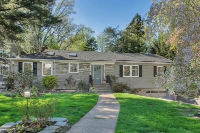 Montclair Twp. Single Family Home For Sale: 132 Norwood Ave
