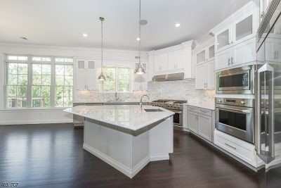 Mendham Boro NJ Single Family Home For Sale: $1,179,900