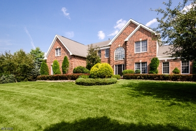 Montgomery Twp. Single Family Home For Sale: 80 Saxon Way
